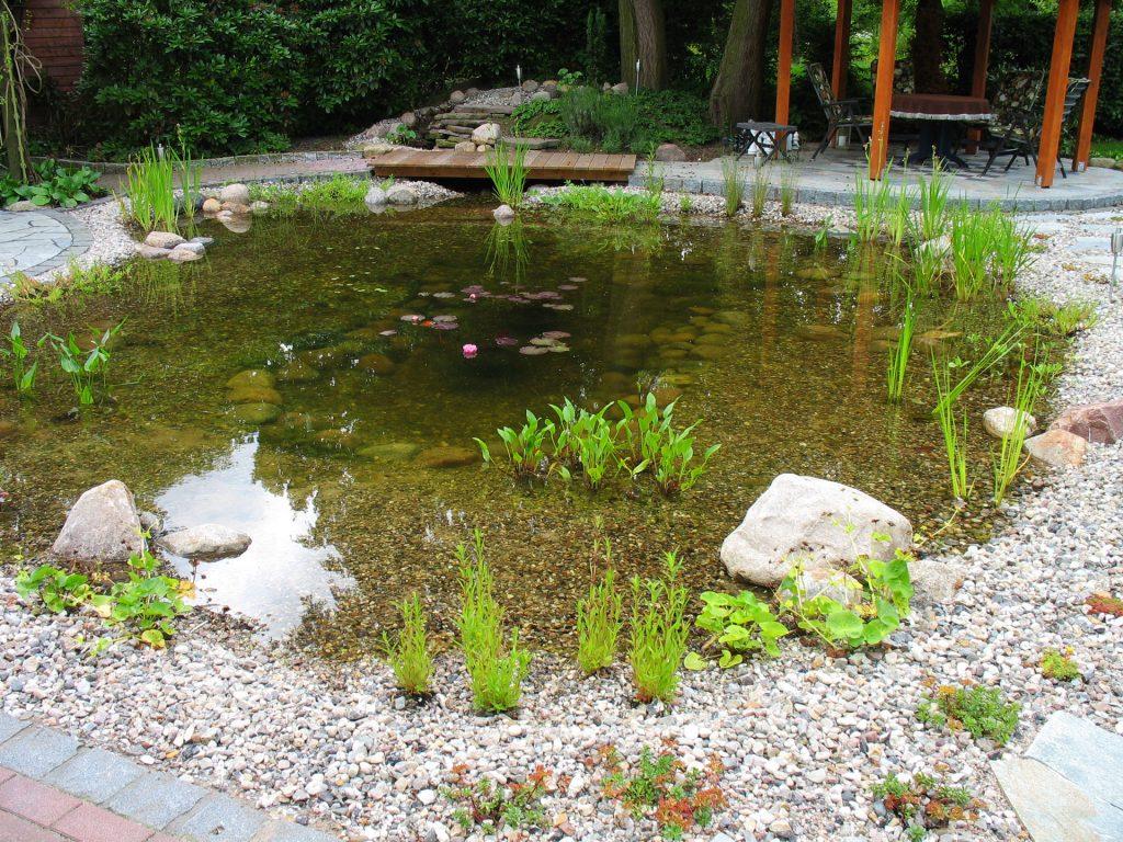 Teiche und bachl ufe biotop for Teich aus traktorreifen